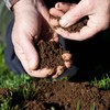 Introduction to Building Better Soils
