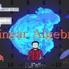 College Level Advanced Linear Algebra! Theory & Programming!