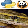 Python Bootcamp for Data Science 2021 Numpy Pandas & Seaborn Coupon