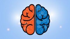 Maximize Productivity and Empower Your Mind Using Smart Habits and Neuroscience!