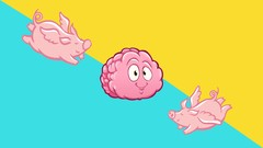 A Psychotherapist Specializing in ADHD who has ADHD Explains how to Turbocharge your Productivity