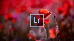 Organize, Edit, and Output your images in Adobe Lightroom like a Professional!