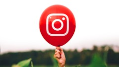 2020 Complete Instagram Marketing Masterclass: Become a Pro
