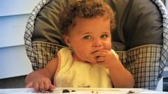 Introdução Alimentar - a chave para a saúde do seu bebê