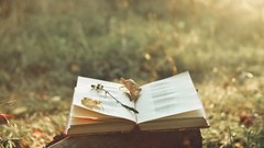 Poetry Basics: How to Write an Amazing Poem to Publish