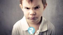Pegar, morder, empujar, chillar: ¿por qué tiene estos comportamientos agresivos? ¿Cómo podemos …