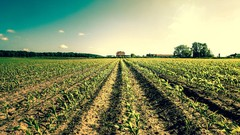 Introduction to Precision Agriculture