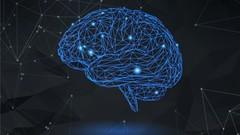 10X Neuroplasticity SUPERPOWER: Build Better Mental Health