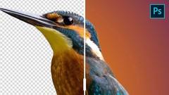 Photoshop Basics - Meistere die Ebenen und Werkzeugpalette