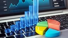 Liquidity Ratios, Activity or Performance Ratios, Leverage ratios and Profitability Ratios