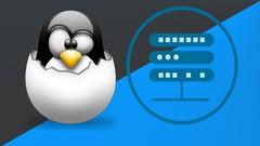 Imágen de Master Linux Server Professional con  Fedora Server y Debian