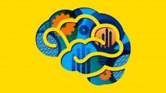 Cómo diseñar e implementar un programa de desarrollo neuromotor en la escuela inicial y primaria: …