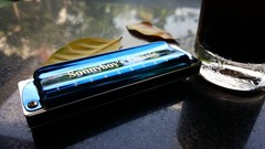 Enhance your harmonica playing and easily acquire skills others have never heard of. It took me 30 …