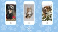 Pet photos in a snap!