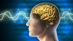 Quantum Physics/Quantum Computing (University Level Course) - UdemyFreebies.com