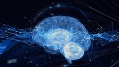 The brain, love and connectedness