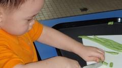 Montessori Teachers' Exercise of Practical Life (EPL) Exam
