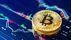 Understanding Bitcoin & Where To Invest In the Crypto Trend
