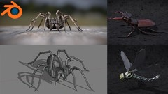 Discover a complete workflow for creating realistics insects and spiders for illustration or …