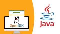 Imágen de Desarrolla sistemas en Java, MySQL, DAO, POO, Swing, 3 Capas