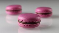 Macarons 2.0: baking 4 types of shells + 15 fillings!