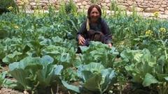 Bio-Organic Farming & Gardening: GROW Your Own FOOD