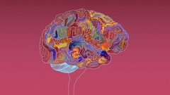 Learn more about Psychology, Psychopathology, Mental Health and Mental Retardation.