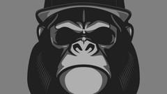 Imágen de Curso Hacking Ético - Gorilla Hack