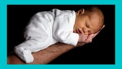 Learn about the Physical, Mental, Social, Emotional, and Cognitive development & Psychology of a …