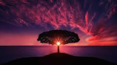 10 Days Of Mindful Awareness Meditation Vipassana