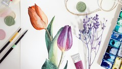 Watercolor Botanical Series: Paint Tulips Step by Step