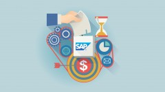 Learn how to plan in SAP from zero with functionality overviews and a case study