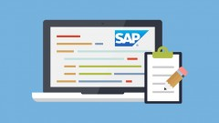 Learn SAP with Peter Moxon - Ideal Beginner SAP Training Course! Unlimited Life Time Access & Fully …