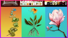 Watercolor Painting Flowers by Award Winning Artist