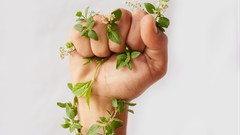 CSR Development & Communications: Make a Difference Today! - UdemyFreebies.com