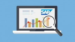 Learn SAP BW BEx Analyzer Reporting with Peter Moxon. In-Depth SAP BI Training Course - Unlimited …