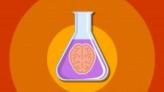5 Amazing Psychology Experiments - UdemyFreebies.com