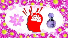 An incredible stress management technique by using essential oils that come from plants. Formula …
