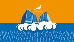 Learn how to query MariaDB Databases using HeidiSQL
