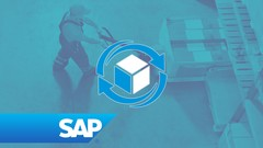 Learn how to organize and operate Warehouse Management functionality in SAP