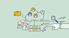 Learn SQL Developer Skills