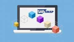 SAP ABAP Objects Programming Training With Peter Moxon, Study For Certification - Life Time Access + …