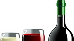 Become a Wine Connoisseur