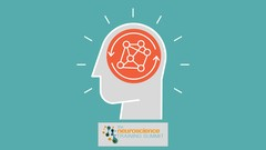A Practical Approach to Improving Your Life Through Neuroscience