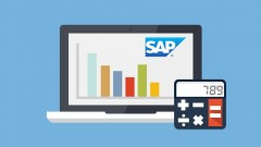 Learn SAP Financial Accounting - Online Training