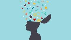 Descubre la neuroeducacion y desarrolla al máximo todo el potencial del cerebro infantil