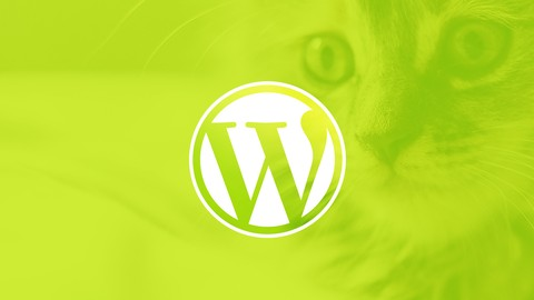 WordPress for Beginners: Create a Website Step by Step