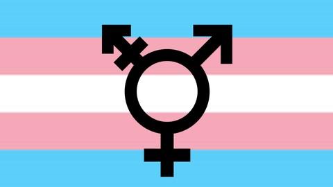 Netcurso-transgender-101