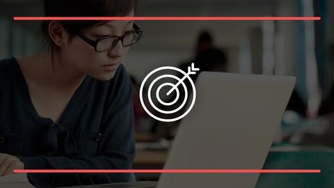 Netcurso-udemy-insights-set-your-course-goals