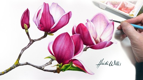 Paint Realistic Watercolour and Botanicals - MAGNOLIAS